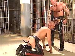 Freaky gay slave maws depraved master on knees