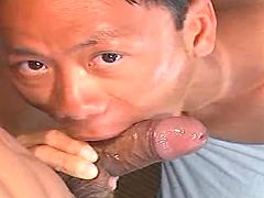 Chinese cocksucker greedily takes sausage in mouth