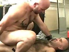 Mature gay jazzes in doggy style and rides dick