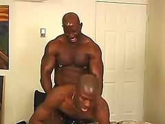 Lascivious black studs fuck brains out