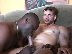 Tight black studs arrange wild orgy