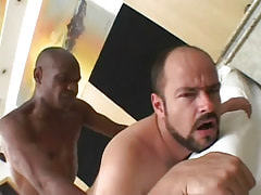 Bear gay penetrated by gangsta guy in bed