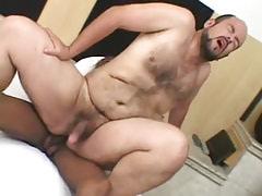 Bear gay jumps on giant black schlong