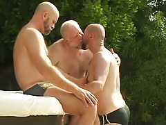 Three bear placid gays kiss by pool