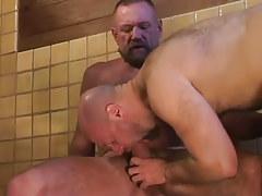Bear dilf swallows hard wang of mature gay