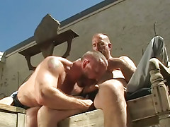 Bushy gay sucks cock of old stud