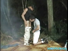 Latin twink twinks suck in dark forest