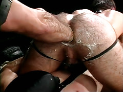 Bear gay fistfucks hairy champs asshole