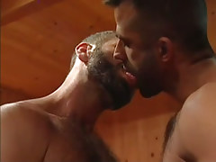 Bear gay kiss each other