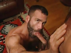 Hairy man-lover throats hard cock in house hunting