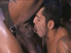 Arabian gay sucked and purchases shady cock in tight ass