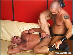 Hairy dilf fucks old bear gay on sofa