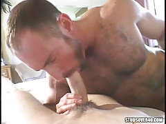 Placid hairy twink sucking cute lad