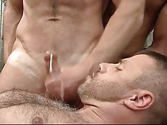 Dirty gay attains a portion of cum on his hairy chest