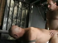 Mature unshaved gays hard fuck in doggy style