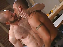 Bear homo kissing sexy guy