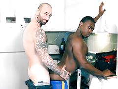Kitchen Gay